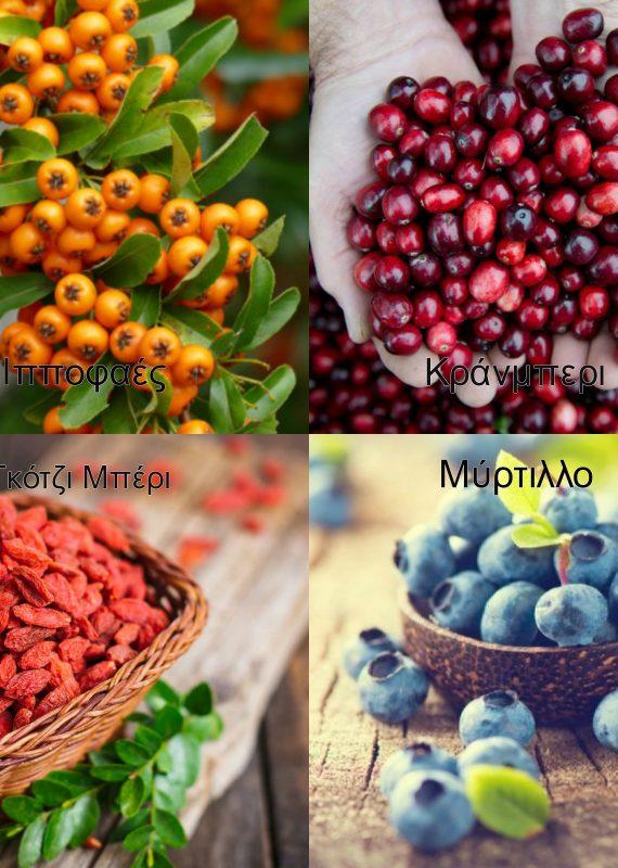 Μιά καινοτομία στη μεταποίηση των «Υπερτροφών» εφαρμόζεται στο εργαστήριο Μηχανικής Τροφίμων και Βιοσυστημάτων από επιστήμονες του Ιδρύματος στη Λάρισα.